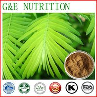 Wholesale natural mimosa hostilis root bark extract powder g
