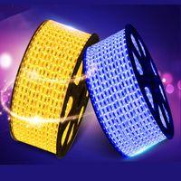 Wholesale SMD AC220V LED Strip Flexible Light leds m Waterproof LED Light With Power Plug M M M M M M M M M M ZK90