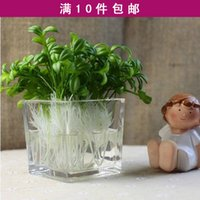 bean sprout chinese - Artificial plants artificial flower bean sprout small bean sprouts peas small plants bonsai for home decor