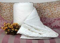 Wholesale Pure Mulberry silk Filling duvet blanket kg for Spring Autumn cm cotton cover OEM size is ok