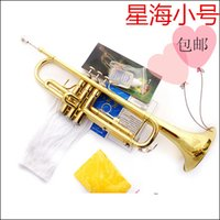 Wholesale 2015 Hot Sale Rushed For Vincent Bach Trumpet Tuba Trompeta Small Musical Instrument Mp3 B Paint Gold Piston Lubricating Oil