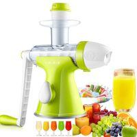 Wholesale Slow Manual Juicer Fruits Vegetables Hand Juicer Suction Base Kids Juicer Ice cream Maker Juice Extractor Masticating Extruder Mixer grinder