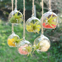vases - Creative Hanging Glass Vase Succulent Air Plant Display Terrarium Small Hanging Glass Vase Air Plant Terrarium