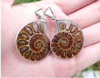 achat en gros de pendentif madagascar-2pcs / lot Pendentif fossile naturel de Split Ammonite Specimen Shell Healing Madagascar 26mm - 30mm