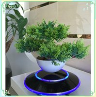 Wholesale 5 magnetic levitron ufo base air plant pot display stands with led light