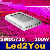 best greenhouses - Hot Sale W Led Grow Lights Red Blue SMD Hydroponics Greenhouse Fruit Plants Lamp AC V Best For Growing and Flowering