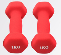 Wholesale Two Female small Dip dumbbell arm aerobics home fitness Yoga Tool