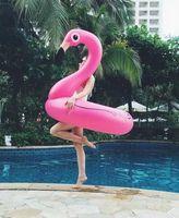Wholesale Wholesales CM Water Sport Mounts Soft PVC Swim Rings Life Buoys Flamingos Safe Comfortable Inflatable Swimming Collars Rings Life Belt