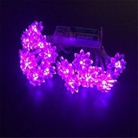 battery operated patio lights - 20 Led String Lights Battery Operated Christmas Fairy Lights Warm White Lutos Flower Decorative Indoor Outdoor Tree Party Patio