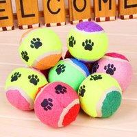 Wholesale Animal playing toy tennis ball Training Random color