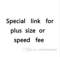 Wholesale New Special link for plus size or speed fee or some other changes