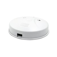 Wholesale Smoke Detector p Spy Cameras m Motion Detctive fps Wireless Spy Hidden Cameras with mAh Battery Microphone