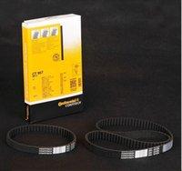 Wholesale OEM products Volkswagen Generator belt Generator timing belt Timing belt fit to Polo L Part number CT957