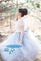 Wholesale Light blue tutu tulle girl skirt wedding party flower girl popular skirt students school fashion homecoming prom party tutu dress