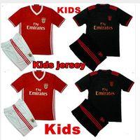 Wholesale DHL Mixed buyhome away Benfica Kids jerseys child teens Shirt NICO GAITAN LUISAO LIMA SALVIO Wholesalers jersey New Season