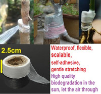 Wholesale m Flower Vegetable Grafting Tape Garden Degradable Plants Seedling Tools Use for the process of flowers plants grafting