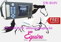 animal ultrasound - Low Cost Veterinary Ultrasound Scanner EW B10V With Linear Probe L7 For Small And Large Animal