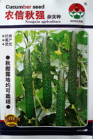 autumn vegetable planting - Vegetable seeds Its strong autumn cucumber seeds Cucumber hybrid precocious Planting grams of disease resistant high yield in the spring