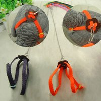 Wholesale Practical Random Color Soft Fashion Leash Adjustable Multicolor Parrot Bird Harness Light