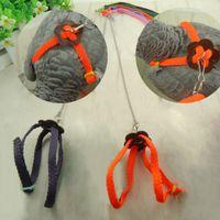 Wholesale Practical Random Color Soft Fashion Leash Adjustable Multicolor Parrot Bird Harness Light