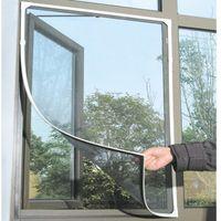 Insecto de mosca del mosquito del mosquito de la mosca del mosquito de la mosca de la puerta en la ventana de la puerta