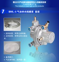 Wholesale BML Single Way Pneumatic Diaphragm Pump For Printing Machine Air Operated Flexo Ink Pump