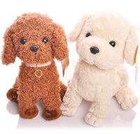 Wholesale hi teddy dogs Plus Animals gifts for children so cute plush toys poodle cm cm polypropylene cotton