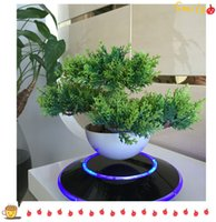 artifical plants - 30 dhl free maglev levitating air plant bonsai potted display stand for decorative artifical