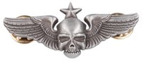airborne wings - US ARMY ST AIRBORNE WING METAL BADGE PARACHUTE SKULL PIN INSIGNIA