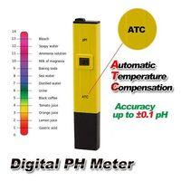 Wholesale Advanced Pool Water Digital PH Meter Pocket Tester measure Pen SPA Aquarium Tester Aquarium Pool Hydroponic Automatic Water Monito