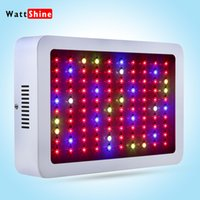 Wholesale Whole hot seller W Led Grow Lights Panel W Led plant lamps for indoor Greenhouse hydroponic systems grow tent CE ROHS