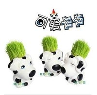 Wholesale REAL Grass New Arrival real planting grass little vase Good for gift decoration cute cow