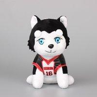 Wholesale Anime Kuroko s Basketball Kuroko Tetsuya Seirin Dog Plush Toy Stuffed Animals Children Gift quot CM