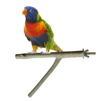 Wholesale Y Shape Pet Bird Parrot Hamster Squirrel Calopsita Standing Tree Branch Perch Toys Holder Teething Rings Random Color cm