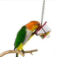 Wholesale Bird Feeding Box Parrot Pet Bird Hex Star Acrylic Foraging Feeder Box Hanging Cage Swing Chew Toys