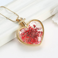 aromatic plants - 2016 New Plants Dried Flower Locket Pendant Necklace Aromatic Scent Bottle Golden Love Heart Crystal Pendant Pressed Flower Long Necklace