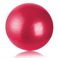 Wholesale 75CM Exercise Ball With Pump Antiburst Gym Yoga Fitness Ball Pregnancy Birthing