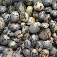 africa energy - 2lb septarian Palm Soap Worry Stone Reiki Chakra Crystal Energy Healing Decor