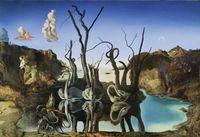 Wholesale Dali Salvador Swans Reflecting Elephants ART POSTER PRITING