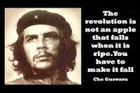 american classic books - Che Guevara Memories of a Cuban revolutionary war book silk fabric cloth Poster x36 inch Art Silk Poster