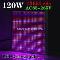 balcony flower boxes - 120W Red Blue Leds AC85 V LED Grow Light for Flowering Plant and Hydroponics System Indoor Balcony Grow Box