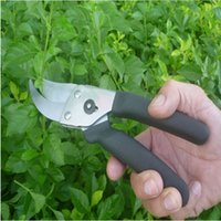 Wholesale Anvil Gifts courtyard garden tools garden shears pruning scissors branches gardening shears