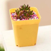 Wholesale 14pcs set Flower pots with Tray plastic creative small square pots Garden Supplies multicolor plant grow