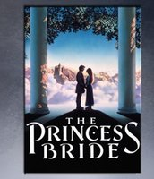 abstract painting videos - THE PRINCESS THE PRINCESS BRIDE VIDEO COVER MOVIE Art Print poster on canvas for wall decoration