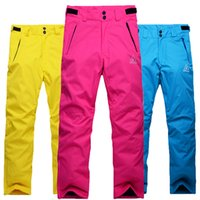 Wholesale Winter pantalones mujer Waterproof snowboard Ski pants for women thicken Warm skiing pants Outdoor snow trousers High Q