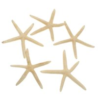 Wholesale Fashion set Star Fish Star Sea Animal Shell Beach White Finger Star Fish Great Weddings Party Craft Gifts DIY Home Decor