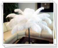 Wholesale white and black quot quot CM baby headwear ostrich feathers plumage flapper dresses for craft DIY accessories F6