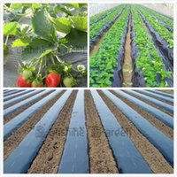 Cheap Wholesale-Black Agricultural Film 1x50Meters Strawberry PE Film Garden Flower Greenhouse Plastic Mulch Film 0.01mm Thickness