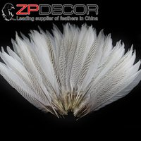 Wholesale Retail and from ZPDECOR cm inch White Silver Pheasant Tail Feathers for Decoration Performance
