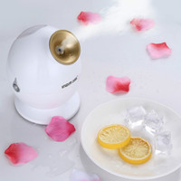 Wholesale Elitzia facial steamer deep cleaning moistening regeneration of collagen device